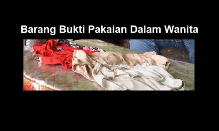 Menjijikkan, Pengakuan Remaja yang Curi dan Koleksi Pakaian Dalam Milik Tetangga, Digunakan Untuk..